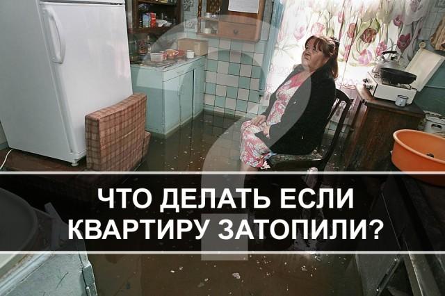 что делать если вашу квартиру затопило